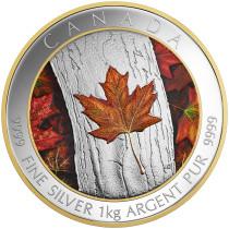 Maple Leaf Forever Zilver 1 Kilogram 2016 - Voorzijde