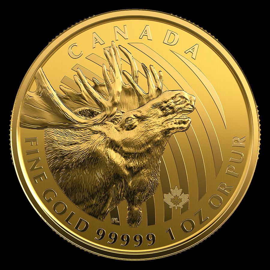 Moose Goud 1 Ounce 2019 | Muntzijde | goud999