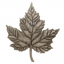 Maple Leaf Forever Zilver 1 Kilogram 2017 - Voorzijde