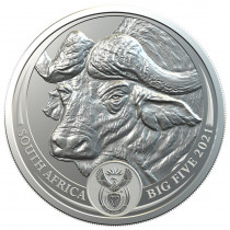 Big 5 Series - Buffalo Zilver 1 Ounce 2021 B.U.