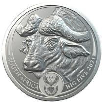 Big 5 Series - Buffalo Zilver 1 Ounce 2021 B.U.