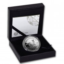 Krugerrand Zilver 1 Ounce 2020 PROOF - doos