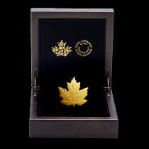Maple Leaf Silhouette Goud 1 Ounce PROOF 2016 | Doosje open | goud999