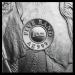Elephant Zilver 1 Ounce 2019 | Detail | Goud999